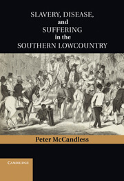 Slavery, Disease, and Suffering in the Southern Lowcountry, Cambridge University Press, 2011.