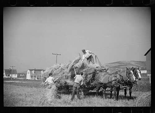 Carl Mydans, Threshing crew loading bundles, Tygart Valley, West Virginia, August, 1936. Library of Congress Prints and Photographs Division, FSA/OWI Black & White Negatives Collection, LC-USF33-000720-M3.