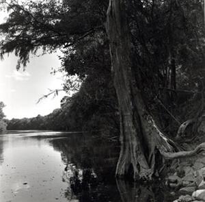 Nancy Marshall, Altamaha River, Georgia, 2010.