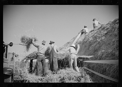 Carl Mydans, Threshing, Tygart Valley, West Virginia, August, 1936. Library of Congress Prints and Photographs Division, FSA/OWI Black & White Negatives Collection, LC-USF33-000723-M2.