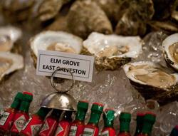 Kelly Yandell, Elm Grove oysters, Galveston, Texas, 2011.