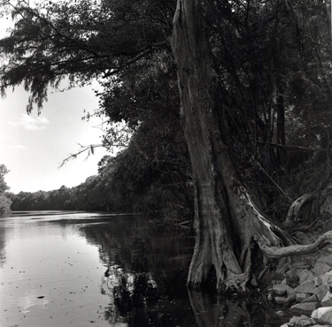 Nancy Marshall, Altamaha River, Georgia, 2010.