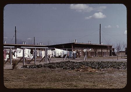 Arthur Rothstein, Community clothesline, FSA camp, Robstown, Texas, 1942.