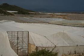 "John Howard, Plásticos, Near Bomb Site #2, Palomares, Spain, April 2011. From ""Palomares Bajo."""