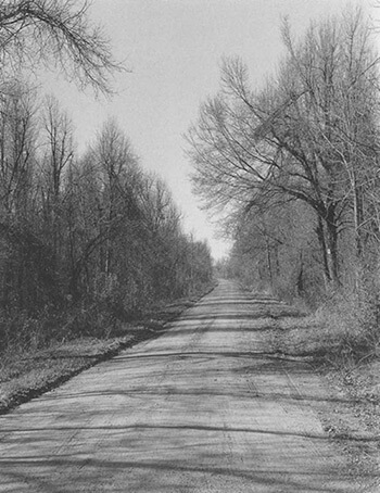 Country Road, Early Spring, Near Marks, Quitman County, Mississippi, photograph by Maude Schuyler Clay © 1997. See more at the Jennifer Schwartz Gallery.