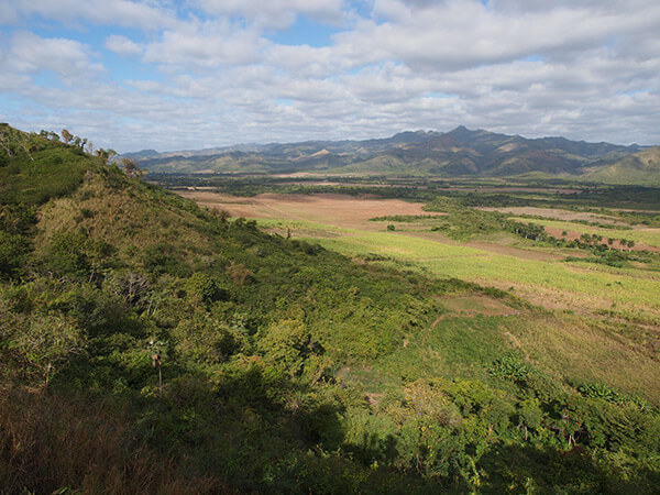 Charles D. Thompson, Jr., Fallow, newly plowed, and re-growing sugarcane fields, east of Trinidad, Cuba, 2010.