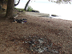 Rheta Grimsley Johnson, Trash on a beach on Pickwick Lake, Fish Trap Hollow, Mississippi, 2012.