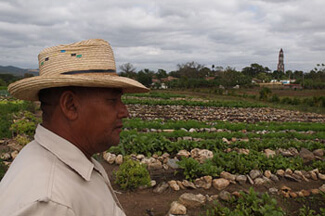 Charles D. Thompson, Jr., Pedro Rodriguez Pérez, Vice-President of the Organoponico Manaca Iznaga, looking over the vegetables he and nine other farmers grow for a living. In the background is the infamous tower in the Valle de los Ingeneros where slave owners overlooked their workers in fields, Trinidad, Cuba, December 2010.