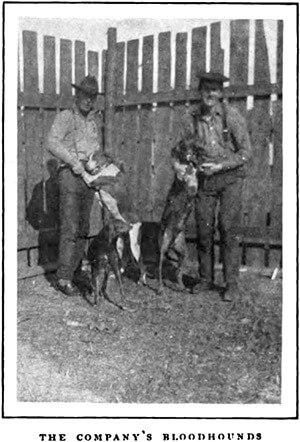 "The company's bloodhounds, outside Lockhart, Alabama. Alexander Irvine, ""My Life in Peonage,"" Appleton's Magazine, July 1907, 7."