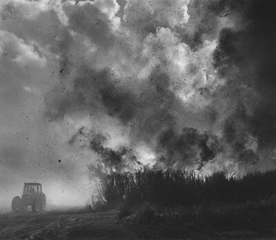 Burning Cane, Louisiana, photograph by Debbie Fleming Caffery © 1999. See more at the Jennifer Schwartz Gallery.