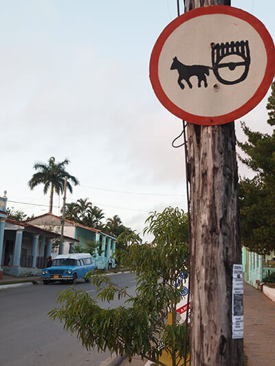Charles D. Thompson, Jr., Early morning in Viñales, a sign depicting a common form of farm transport along with one of thousands of US vehicles from the 1950s still on the road thanks to Cuban ingenuity, Viñales, Cuba, January 2011.