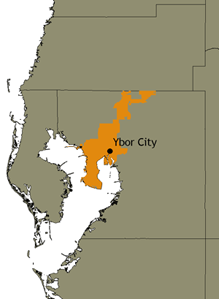 Map of the City of Tampa within Hillsborough County