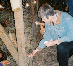 Allison O. Adams, A guest visits with the chickens at the first Cluckapalooza, Decatur, Georgia, September 2004.