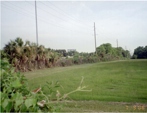 Kwesi Degraft-Hanson, Part of the former Ten Broeck Race Course site, now Bradley Plywood Corporation property, Savannah, Georgia, July 2008.
