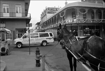 David Wharton, Intersection of St. Louis and Royal, French Quarter, New Orleans, Louisiana