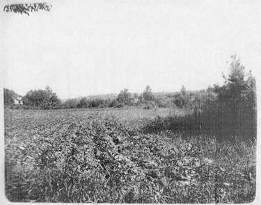 Looking West from Ponce de Leon Springs circa 1895 jpg image From the Healey Collection, courtesy the Atlanta-Fulton County Public Library