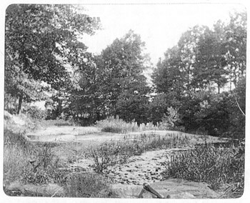 Ponce De Leon Springs circa 1895, from the Healey Collection, courtesy of the Atlanta-Fulton County Public Library