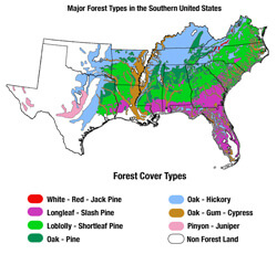 Major Forest Types in the Southern United States.