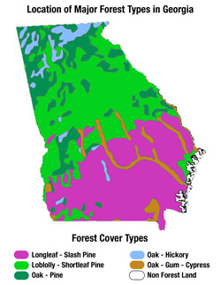 Location of Major Forest Types in Georgia.