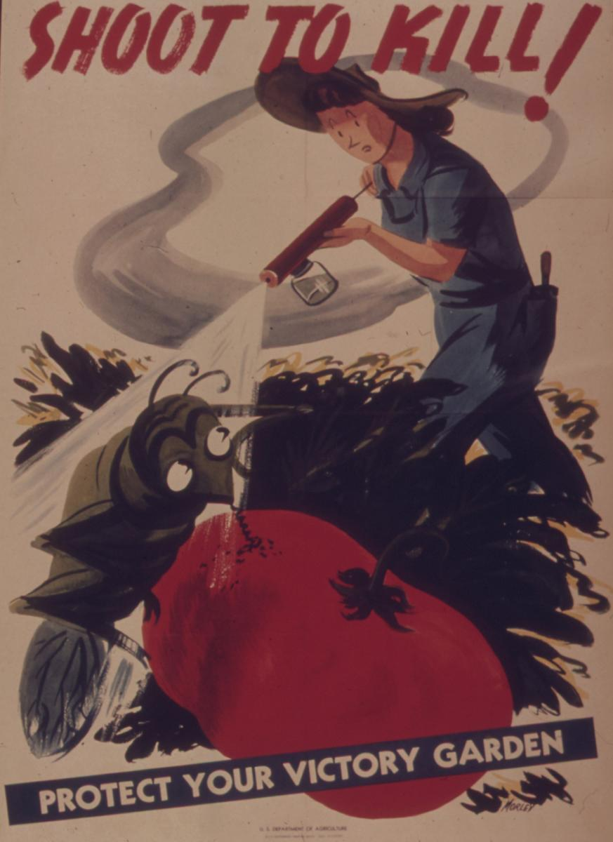 Shoot to Kill, Protect Your Victory Garden. Image by the US Department of Agriculture, 1941–1945. Courtesy of Wikimedia Commons. Image is in the public domain.