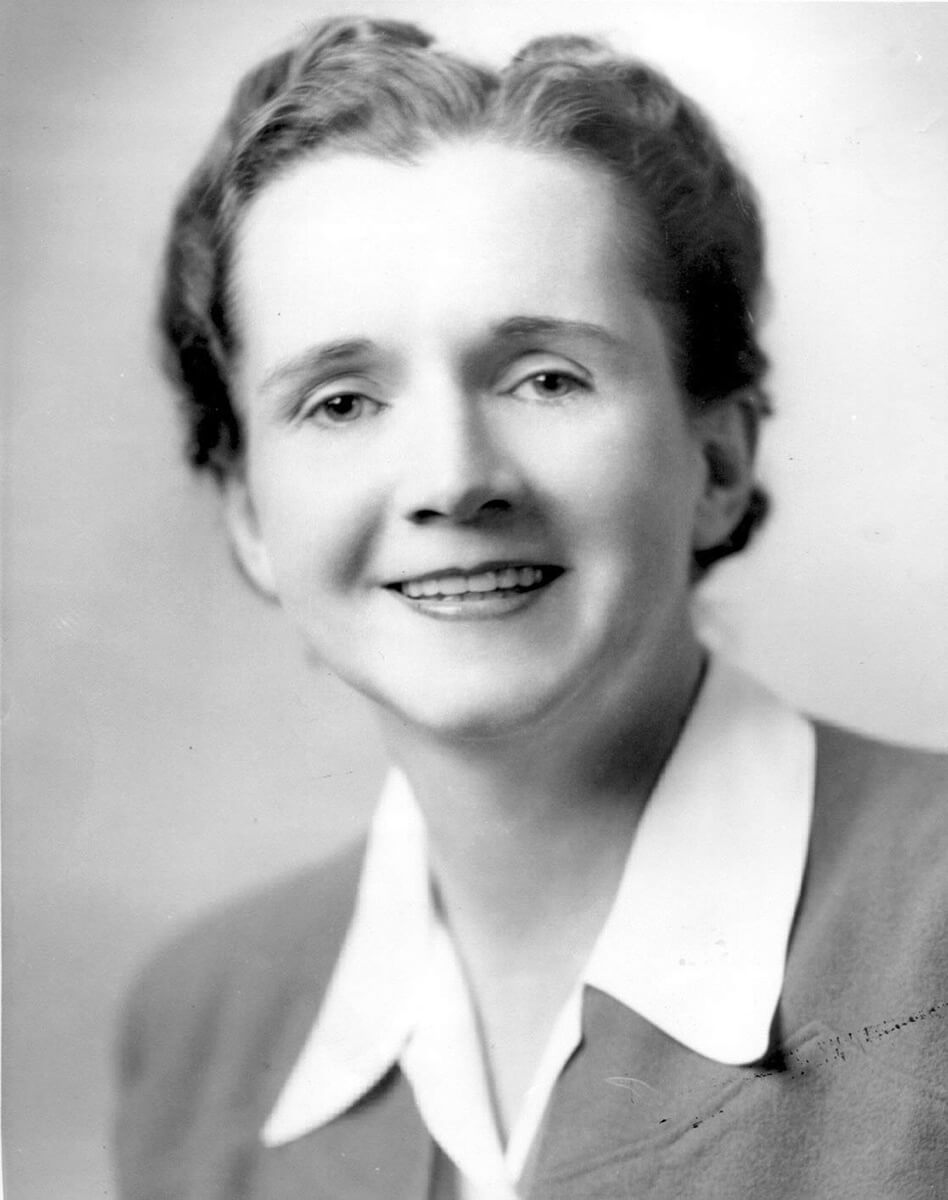 Official photograph of Rachel Carson as US Fish and Wildlife Service employee, ca. 1940. Courtesy of Wikimedia Commons. Image is in the Public Domain.