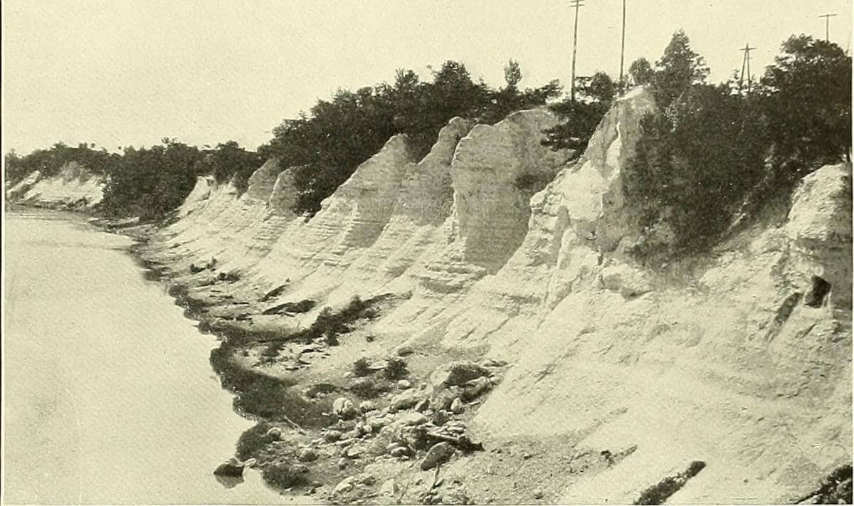 "Selma Chalk photographs from 1914 US Geological Survey ""Cretaceous Deposits of the Eastern Gulf Region,"" ca. 1914. Image uploaded by Flickr user Internet Archive Book Images. Image is in the public domain."