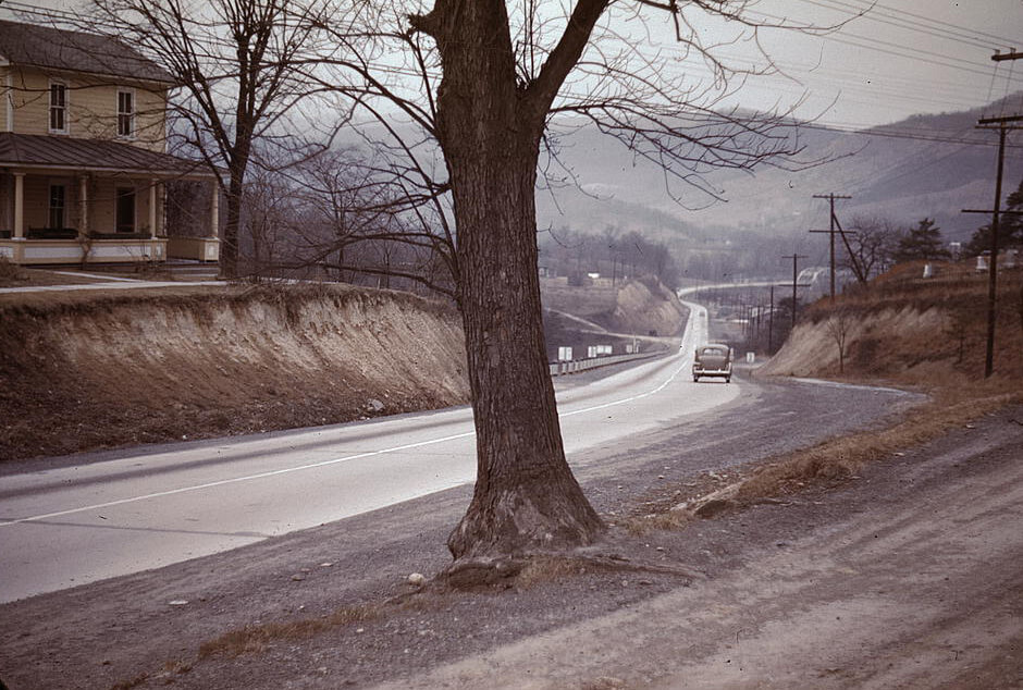 A photograph with muted colors showing bare winter trees and a highway winding into the distance.