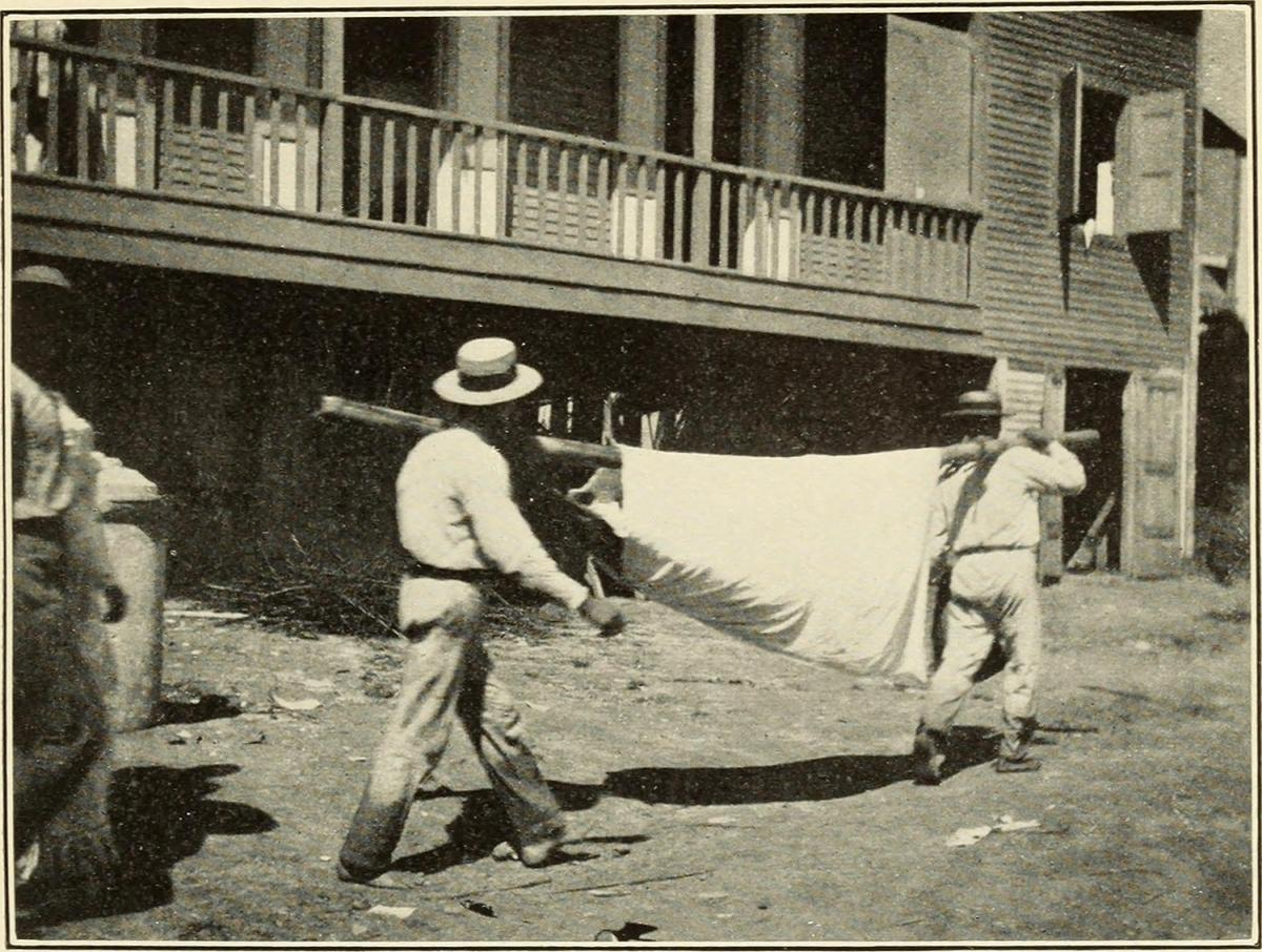 A 'Hammock Case' at the Utuado Station in 1904, Puerto Rico, 1911. Originally published in Bailey K. Ashford and Pedro Guitérrez Igaravidez's Uncinariasis (Hookworm disease) in Porto Rico: a medical and economic problem (Washington DC: US Government Print Office, 1911). Photograph uploaded by Flickr user Internet Archive Book Images. Image is in public domain.
