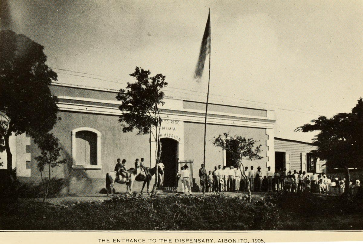 The Entrance to the Dispensary, Aibonito, 1905. Originally published in Bailey K. Ashford and Pedro Guitérrez Igaravidez's Uncinariasis (Hookworm disease) in Porto Rico: a medical and economic problem (Washington DC: US Government Print Office, 1911). Photograph uploaded by Flickr user Internet Archive Book Images. Image is in public domain.