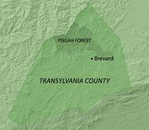 Location of the Pisgah Forest Precinct in Transylvania County, North Carolina. Map by Southern Spaces, 2014.