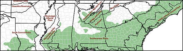 EPA ecoregions level III and historic range of longleaf pine, Map by Longleaf Alliance. Reproduced by permission of Longleaf Alliance.