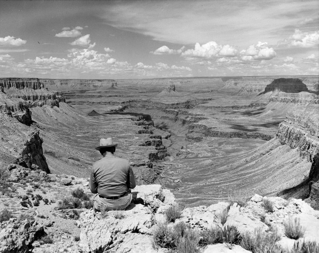 Grand Canyon Beaver Canyon. Photograph by Steve Leding, 1954. Courtesy of Flickr user Grand Canyon National Park. Creative Commons license CC BY 2.0.