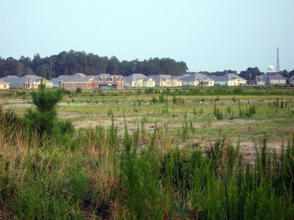 Mary Battle, Development, Myrtle Beach, South Carolina, 2007.