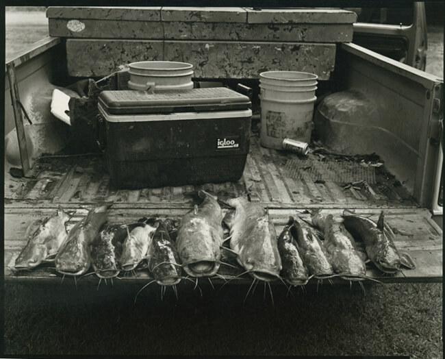 Tom Rankin, Fish, Montgomery Island, Arkansas, 2005.