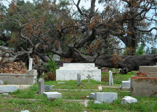 Emma Bertolaet, Biloxi cemetery, Biloxi, Mississippi, 2006.