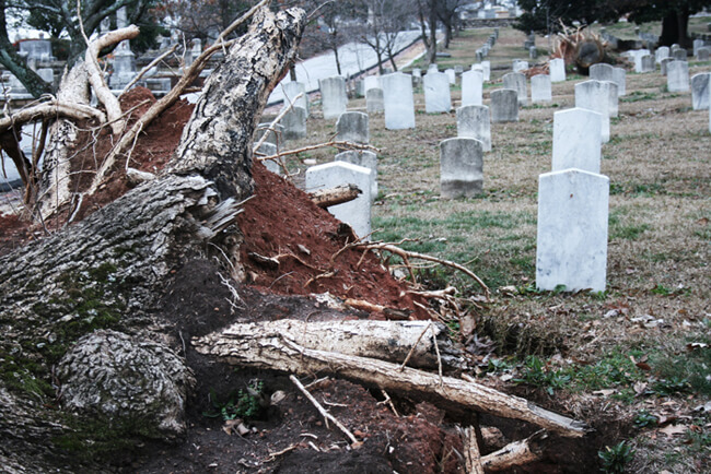 Helena Peixoto, Nine months after tornado, Atlanta, Georgia, 2008.