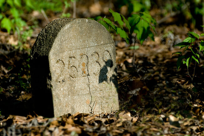 Thomas McKane, Just a number, Old Bryce Hospital Cemetery, Tuscaloosa, Alabama, 2007.