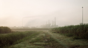 Richard Misrach, Sugar Cane and Refinery, Mississippi River Corridor, Louisiana, 1998 from Petrochemical America, photographs by Richard Misrach, Ecological Atlas by Kate Orff (Aperture, 2012). © Richard Misrach, courtesy of Pace/MacGill Gallery, New York; Fraenkel Gallery, San Francisco; and Marc Selwyn Gallery, Los Angeles.