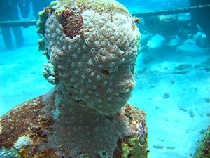 Underwater sculpture by Jason deCaires Taylor, Dragon Bay, Grenada, 2011. Photograph by Michael Brashier. Courtesy of Michael Brashier.