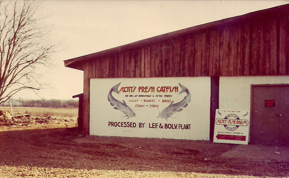 "An old photograph showing a wooden building with a sign that says ""Scott's Fresh Catfish"""