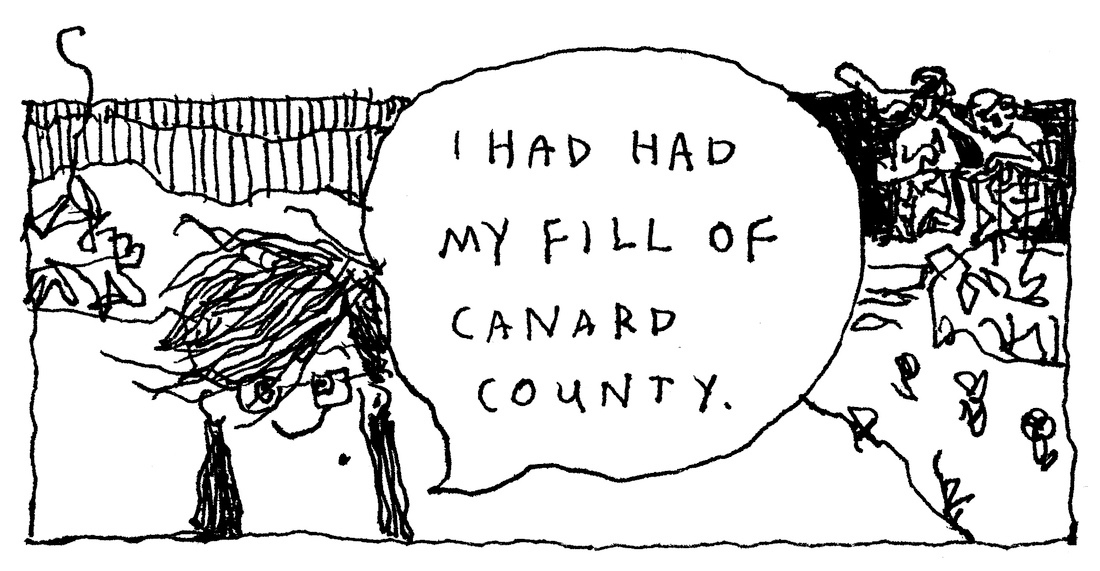 """I had had my fill of Canard County,"" © Robert Gipe, 2015. Originally published in Trampoline (Athens: Ohio University Press, 2015), 1. This material is used by permission of Ohio University Press, www.ohioswallow.com."