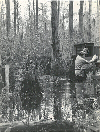Mosquito collection, Emory University Field Station on Ichauway Plantation, ca. 1938-1945. United States Public Health Services Office of Malaria Control in War Areas, Melvin H. Goodwin papers, Manuscript, Archives, and Rare Book Library, Emory University.