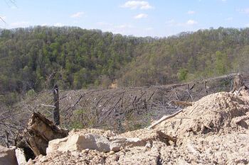 View of Robinson Forest from a strip mine on its south-southeast border, Robinson Forest, Kentucky, 2009. Photograph courtesy of Kentucky Heartwood.