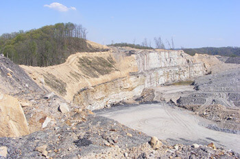 Strip mine on the south-southeast border of Robinson Forest, Kentucky, 2009. Photograph courtesy of Kentucky Heartwood.